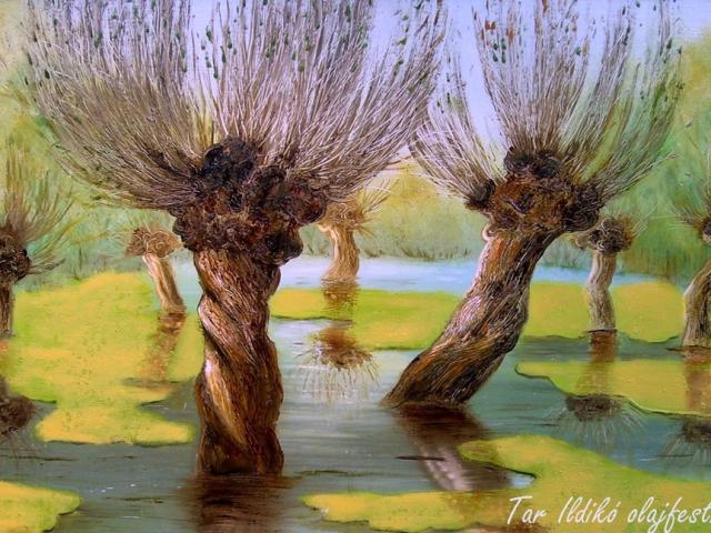 Tar Ildikó olajfestmény 2003. Békalencsés tiszai táj. 70×40