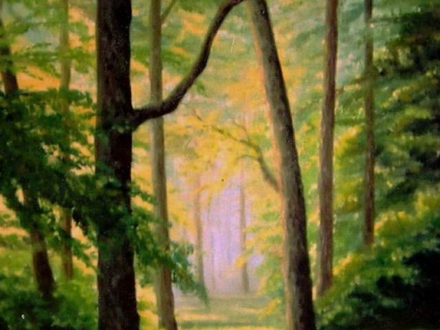 Tavaszi erdő fényei, Tar Ildikó olajfestmény 2001